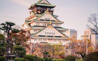 The captivating Japanese education system and the merits of studying abroad in Japan