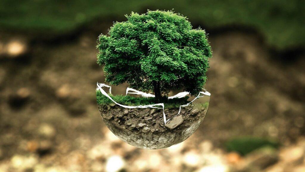 We Can Preserve Our Beautiful Environment Through Global Awareness